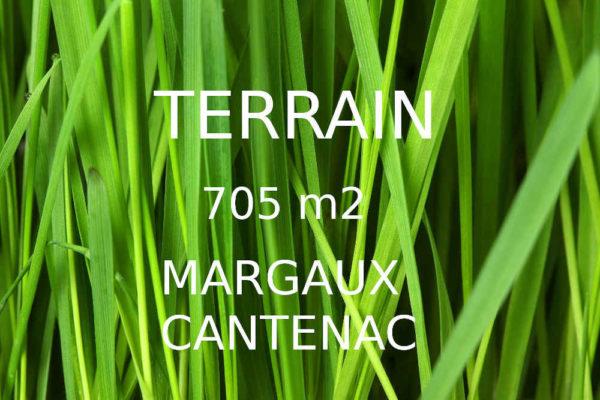 A vendre Terrain Margaux Cantenac – 705 m2- 112 200 €