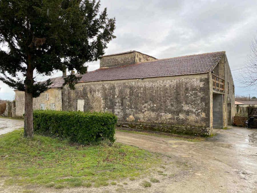 Propriété viticole à vendre Sud Ouest - Bordeaux - Blaye